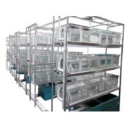 Xenopus modular systems requiring central filtration