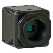 Color CCD Video Camera-COLCAM-HD1080P