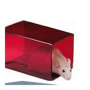 Rat retreat, red