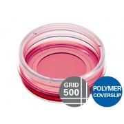µ-Dish 35 mm, high Grid-500